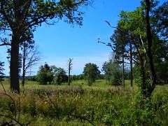 DSCN5684, Fort Hill, July 2018 (a59rambler) Tags: massachusetts capecod