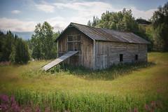 Old barn (Helena Normark) Tags: barn oldbarn weatheredbarn enkroken jämtland sweden sverige sonyalpha7 a7 35mm lensbaby burnside35 lensbabyburnside35 lensbabylove seeinanewway