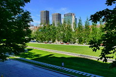 Montreal's Champs de Mars Park on Picture Perfect Morning (@mjmantis Montreal Urban Photos) Tags: montreal cityscape urban summer explorecanada urbanphotography city morning shadow mtl cityview sky quebec canada skyscrapers park citylife oldmontreal outdoor travelphoto travelpics