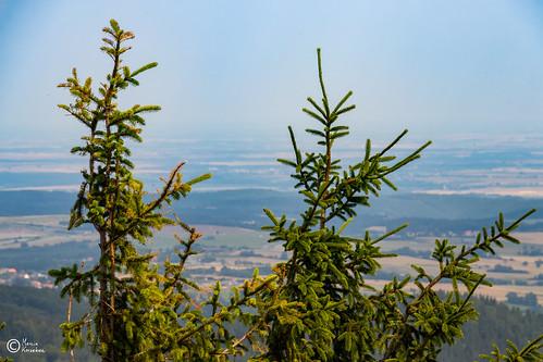 Widoki z Góry Borowej-7