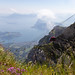 Dragon Ride (Si@Fi) Tags: pilatus luftseilbahn dragon lake lucerne switzerland alps