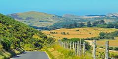 Heatwave, Lulworth, Dorset, England (Oswald Bertram) Tags: jurassiccoast worldheritagesite summer purbeck isleofpurbeck