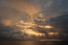 DSC_0263 (yakovina) Tags: silverseaexpeditions indonesia papua new guinea island tambrauw