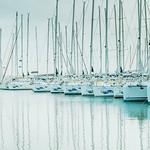 View of many sailboats parked in marina thumbnail