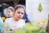Sustainability_STORC_EPIC_20180417_0253 (Sacramento State) Tags: universitycommunications sacramentostate californiastateuniversitysacramento sacstate sustainability storc campus tour garden flower aquaponics greenhouse kids