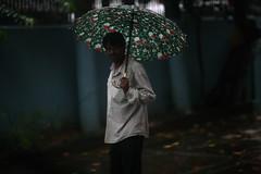 JAHANGIR AND HIS UMBRELLA (N A Y E E M) Tags: jahangir securityguard candid portrait umbrella rain monsoon colors lateafternoon lawn home rabiarahmanlane chittagong bangladesh sooc raw unedited untouched carwindow