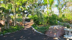 Key West (Florida) Trip 2017 7605Rif 9x16 (edgarandron - Busy!) Tags: florida keys floridakeys keywest keywestgardenclub westmartellotower plants