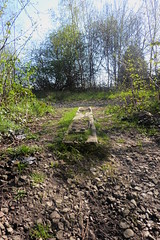 Former railway sleeper at station site, Catcliffe, Sheffield  (former SDR route)   April 2018 (dave_attrill) Tags: ballast april 2018 catcliffe station site sleeper sheffield railway line disused trackbed remains goods sdr stationroad sheffielddistrictrailway southyorkshire