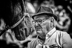 The Horse Whisperer (Andy J Newman) Tags: portrait nikon street d500 airshow weston humor air man beach westonsupermare flight plane funny show silverefex horse fun monochrome blackandwhite candid humour england unitedkingdom gb