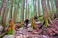 Team-Konstructive-Dream-Bikes-Trail-Trip-Vancouver-2018-Northshore-Trail-Expresso-II
