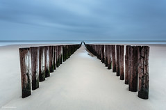 Groyne at Domburg beach (He Ro.) Tags: herbst jahreszeiten zeeland lowtide autumn domburg beach groyne longexposure bluehour niederlande thenetherlands walcheren sand sea ebbe leebigstopper