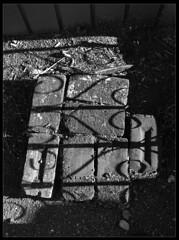 Autumn Light 003 (radspix) Tags: mamiya 645 1000s sekor 55105mm f45 bergger pancro 400 pmk pyro