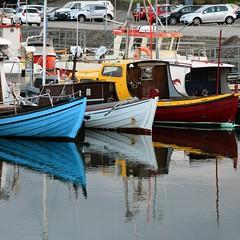 14th of july (mikael_on_flickr) Tags: bastilleday reflections riflessi boats tórshavn føroyar færøerne faroeislands isolefaroe bluewhitered bleublancrouge tricolore havn hafen harbour porto