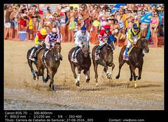 Horse race on Sanlucar of Barrameda, Spain, 2016 (__Viledevil__) Tags: 2016 barrameda spain action amazon beach bet competition competitor day equine exciting fast horse jockey motion outdoors power race racecourse ride rider rivalry run running sand speed sport track win winner sanlúcardebarrameda cádiz españa