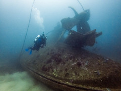 Dive on the Henry Bolte (Corey Hamilton) Tags: eden scubadiving shipwreck underwater