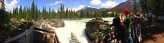 Tourists enjoying the Falls (Trinimusic2008 -blessings) Tags: trinimusic2008 judymeikle nature alberta jasper canada athabascusfalls summer falls july 2018 canadianrockies trees park