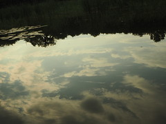 Olszak Pond and Clouds オルシャク池の雲 (kachigarasu PL (busy)) Tags: olympusem10 poznan cybina poland ポーランド ポズナン poznań ツィビナ川 landscape 風景 polska cybinariver pond 貯水池 池 stawolszak olszakpond cybinavalley wielkopolska greaterpoland 夕方 ヴィエルコポルスカ reflection cloud clouds 雲 水に映る 反映 olympusm1442mmf3556ez lateafternoon afternoon użytekekologiczny ecologicalsite olszaki użytekekologicznyolszakiiolszakii takenbywr