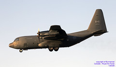 130339 LMML 27-06-2018 (Burmarrad (Mark) Camenzuli Thank you for the 13 mi) Tags: airline canada royal air force aircraft lockheed cc130h hercules registration 130339 cn 3825177 lmml 27062018