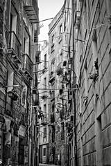 Cagliari Backstreets (@WineAlchemy1) Tags: cagliari blackwhite monochrome noiretblanc backsteets italy sardegna sardinia city balconies shadows apartments vicolo street