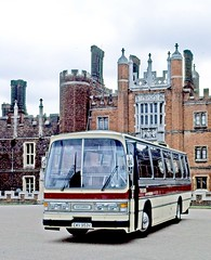 Taylor's, Rottingdean: EWV953V in front of Hampton Court Palace (Mega Anorak) Tags: bus coach bedford ymt duple taylorsrottingdean hamptoncourt