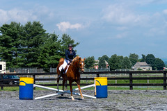 Jumping Show (HelwigPhotos) Tags: horse riding jump jumping woman happy sunny sports equestrian fence chestnut arabian tree pennsylvania barrel show champion action trailer travel shiny clean wash