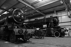 WD Veterans (simmonsphotography) Tags: severnvalley railway heritage preserved preservation train engine locomotive highley enginehouse lms stanier 8f 48773 8233 lmr longmoor 600 gordon wd wardepartment austerity monochrome uksteam