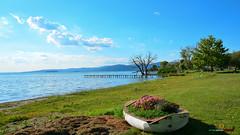 A-LUR_6163 (OrNeSsInA) Tags: trasimeno passignano perugia umbria lago natura sarcangelo italy