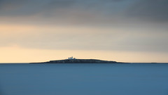 Inner Farne Sunset (NikonNigel) Tags: copyright©nigelcox copyrights england northumberland places seahouses