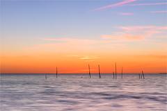 What happened to the nets? (karindebruin) Tags: thenetherlands nederland zuidholland voorneputten hellevoetsluis noordzee northsea beach strand water sunset zonsondergang