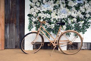 Nancie's Bike