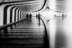 London-1266 (tag71) Tags: canon 5dmarkiii 50mm streetphotography blackwhite noiretblanc nb monochrome amateur london londres england angleterre reflet courbes perspectives