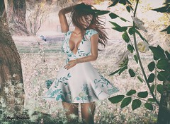 Look 107 (мαчєℓαι ηєιѕѕєя) Tags: maitreya catwa second life secondlife avatar photography fashion clothes blogger blogging blog art fash sweet sensual girls portrait pic dress jewellery style look social bento mesh beautiful