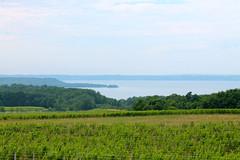 IMG_1158 (sally_byler) Tags: peninsula west bay traverse city michigan winery vineyard summer view landscape scenery nature lake