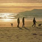 The beach. thumbnail