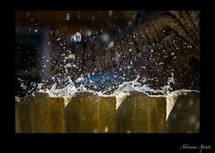 Roma, fontana in piazza S. Maria in Trastevere, particolare (adrianaaprati) Tags: rome fountain water drops july summer roma fontane