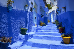 Oil Painting (Darren Poun) Tags: chefchaouen morocco africa arabic arab moroccan traveling street nikon d800 d800e nikkor24mm f14 ngc