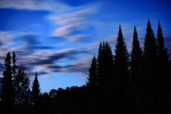 In a Rush (Jacob_Edwards) Tags: sony a7rii mirrorless zeiss 55mm night sky clouds long exposure trees silhouette nature minnesota