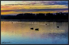 A Touch Of Rainbow Sky (itsallgoodamanda) Tags: sunset sunsetphotography winter2018 wintersunset shoalhaven seascape seaside sea stgeorgesbasin seascapephotography sky sanctuarypoint newsouthwales amandarainphotography australia australiassouthcoast australianlandscape southcoast itsallgoodamanda photography photoborder rainbowsunset colourfullandscape coastallandscape colourfulsunset coastal coastline calmocean coast silhouettetrees silhouettebirds ocean oilpaint digitaloilpaint prettysunset prettybeach paradisebeach phohography jervisbayphotography jervisbay australianphotography oceansunset