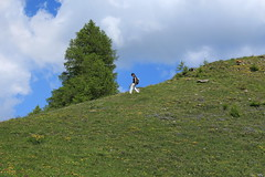 Une promeneuse (bulbocode909) Tags: valais suisse ovronnaz petitpré promeneuses montagnes nature printemps arbres mélèzes nuages paysages vert bleu groupenuagesetciel