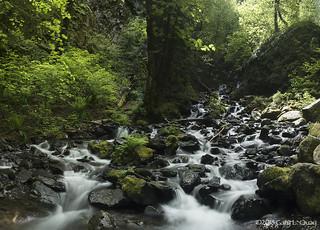 Starvation Creek Falls, May 2018