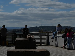 NMS - roof terrace (stillunusual) Tags: edinburgh city scotland uk nationalmuseumofscotland nms museum roofterrace cityscape urbanlandscape urbanpeople realpeople peoplepictures holiday vacation travel travelphotography travelphoto travelphotograph 2018