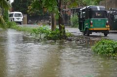 DSC_5837 (madelinedahm) Tags: urbanflooding srilankaflood srilanka colombo kelaniganga floodplain drainagedisaster risk reduction iwmi