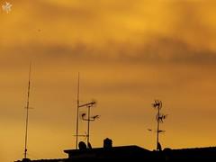 Lasciando la terra per il tramonto. Milano (diegoavanzi) Tags: milano milan italia italy lombardia lombardy cielo sky sera evening tramonto sunset sundown nuvole clouds sony hx300 bridge antenne