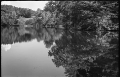 pond, reflections, landscape, Biltmore Estate, Asheville, NC, Fed 4, Industar 26, Kodak TMAX 400, Ilford Ilfosol 3 developer, 7.4.18 (steve aimone) Tags: pond reflections still landscape biltmore biltmoreestate asheville northcarolina fed4 industar2650mmf28 kodaktmax400 ilfordilfosol3developer primelens 35mm 35mmfilm film blackandwhite monochrome monochromatic soviet rangefinder