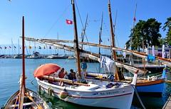 Certains sont même venus de Marseille (Diegojack) Tags: morges vaud suisse d7200 nikon nikonpassion léman port bateaux voiliers voileslatines pointus marseille