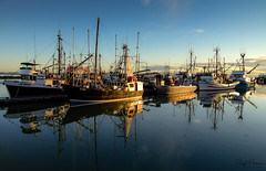 Steveston Fishing Village - Paramount Marina (Explored) (SonjaPetersonPh♡tography) Tags: steveston stevestonfishingvillage stevestonharbour paramountmarina marina boats vessels richmond bc britishcolumbia nikon nikond5300 reflections fraserriver waterscape waterreflections ships