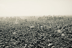 Tokyo (NatalieTracy) Tags: tokyo japan blackandwhite tokyoskytree skytree city observationdeck skyline skyscrapers observationtower metropolis