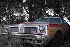 Pontiac LeMans (FX-1988) Tags: 70s black generation hdr headlight junk lemans mood muscle musclecar outdoor pentax pontiac sad scrap sport urbex forth american atmosphere blackandwhite car dark israel junkyard transportation vintage le mans rust rusty colors