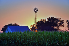 Summer Windmill_187654 (rjmonner) Tags: windmill windmillwednesday sunset summer sky sundown summertime sun midsummer corn cornbelt country cornfield midwest green rural red color countryside barn blue trees tree farm farming field farmland farmstead farmyard farmscape farmfield agriculture agricultural agronomic agronomy architecture acreage acres adel dallas county dallascounty iowa rustic relic relics serene quiet hearthecorngrow humid hot hothumid peaceful