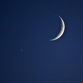 Luna-Venus Conjunction